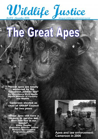 Edition 4 - The Great Apes