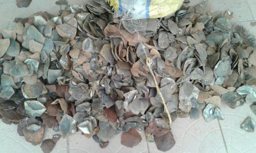 2 traffickers arrested with 128 kg of Giant Pangolin scales.